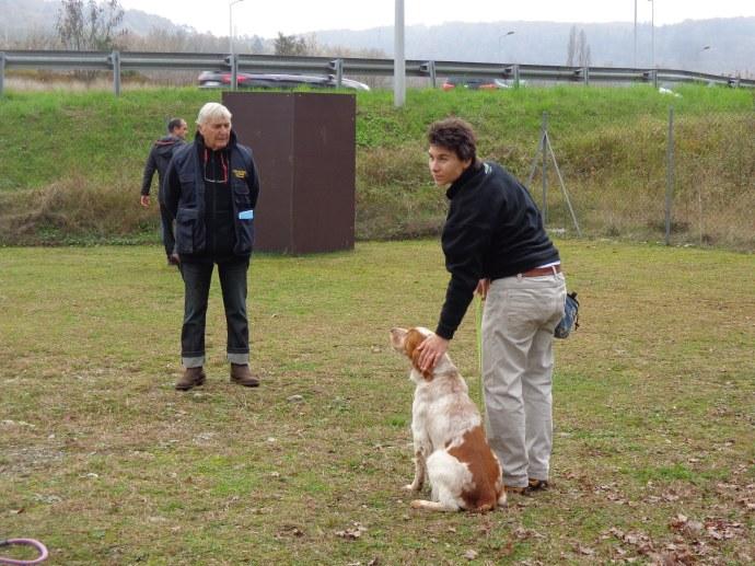 vi4chemins - club d'éducation canine de thonon