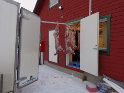 de la remorque à la boucherie / from the trailer to the butchery