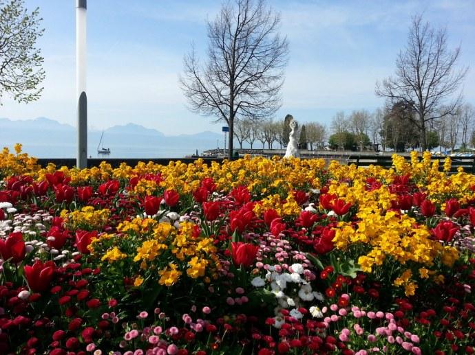 Lausanne en fleur